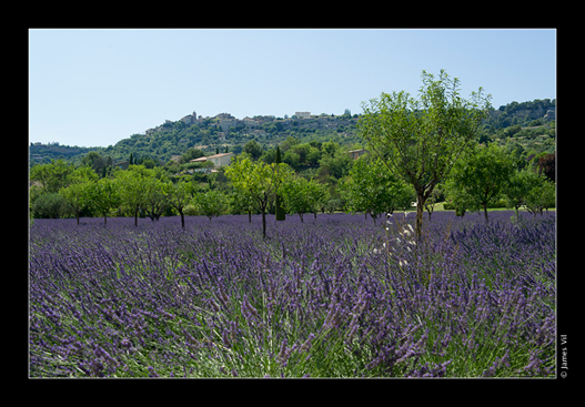provence 3 20131210 1049020156